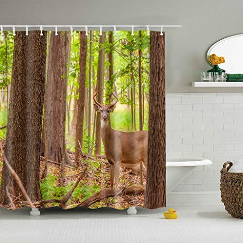 cortinas ducha 200x200 verde