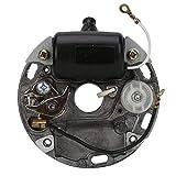 Accesorios Para Herramientas Eléctricas Conjunto de Motor Magnético Motosierra MS070 / 080