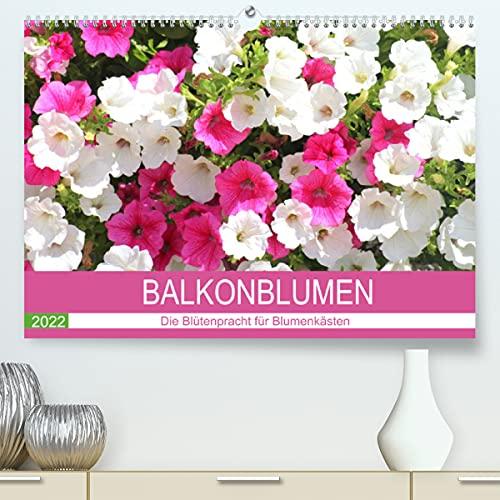 Balkonblumen. Die Blütenpracht für Blumenkästen (Premium, hochwertiger DIN A2 Wandkalender 2021, Kunstdruck in Hochglanz)