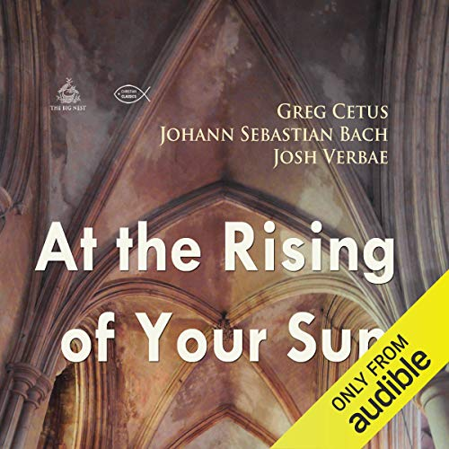 At the Rising of Your Sun cover art
