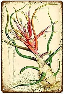 Qunon3 Plaque murale vintage en métal pour décoration de cuisine, jardin, buanderie, salle de bain, 20,3 x 30,5 cm
