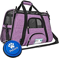 This carrier would be purr-fect for outings with kitty!