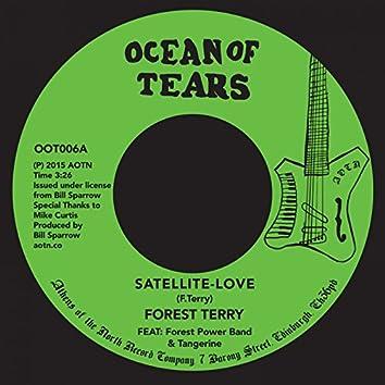Satellite-Love