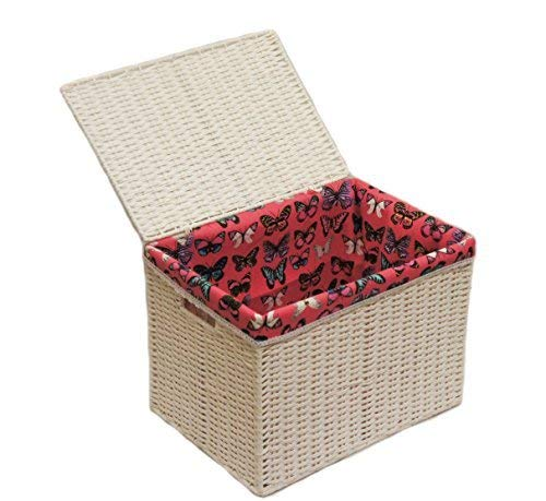 Arpan Medium Paper Rope Basket Storage Chest Trunk Hamper/Kids Toy Storage with Butterfly Cloth Lining, White by ARPAN