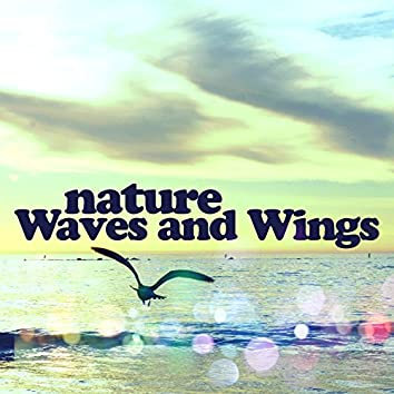 Nature: Waves and Wings