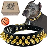 TEEMERRYCA Black Leather Dog Collar with Gold Spikes for Small Medium...