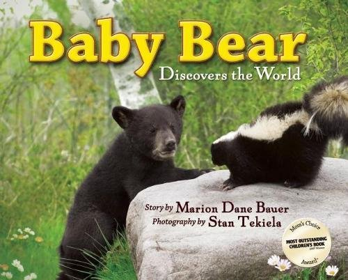 Baby Bear Discovers the World (Wildlife Picture Books)