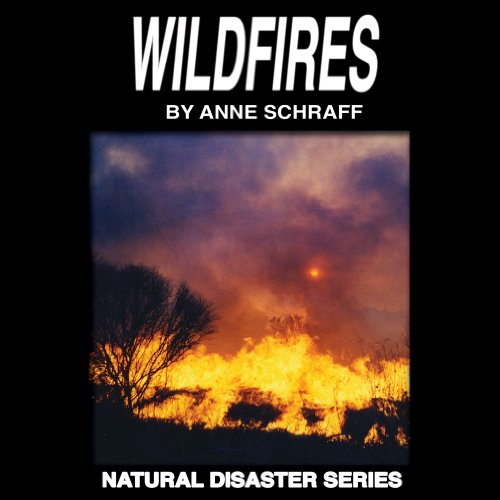 Wildfires audiobook cover art