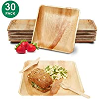 30-Pack Zowella Disposable Palm Leaf 6