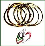 4 Mizrab Plectrons + Jeu de Cordes Complet pour Sitar Indien. 7+11 Cordes