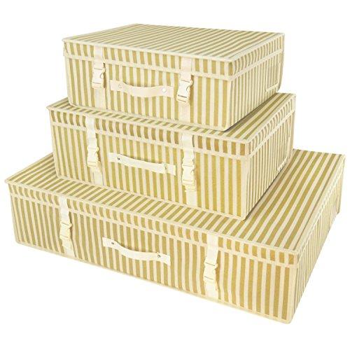 Hangerworld 3 Caja de Ordenación Diferentes Tamaños Transpirable con Tapa Rayas Dorado...