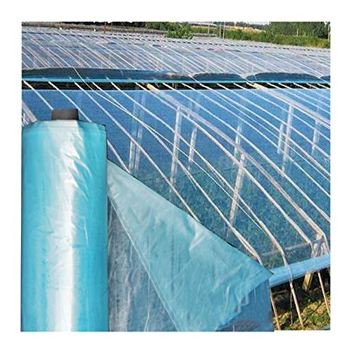 GDMING PVC Plastic Garden Grow Green House,Transparent Polythene Tarps Sheeting Protection Cover For Plants Flower Rainproof Antifreeze Anti-UV, Customizable (Color : Clear, Size : 6x10m)