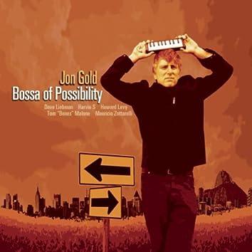Bossa of Possibility