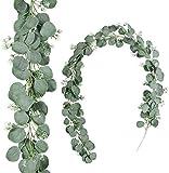 Kyrieval 2er Pack künstliche Silberdollar Eukalyptusblätter Girlande 1,8 Meter Faux Seed Eucalyptus Greenery Hanging Garland Vine für Hochzeit Baby Shower Holiday Greens