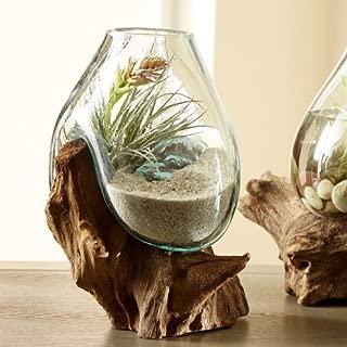Vivaterra Decor/Accessories Teak and Blown Glass Vase Sculpture,