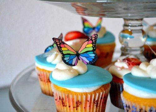 15 best edible butterflies small rainbow monarchs for 2021