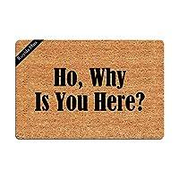 玄関マット Ho Why is You Here 面白いドアマット ドアマット 装飾室内ドアマット 不織布 23.6 x 15.7インチ 洗濯機洗い可能 布地トップ