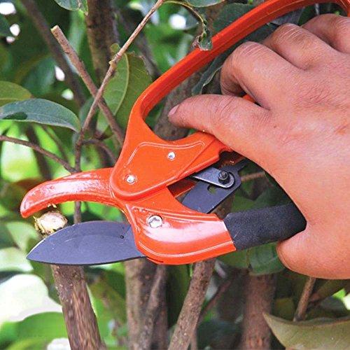 De ratel snoeien takken Shears bevatten een ratel systeem om verstelbare 3-Stage Action Schaar Garden Repair Shear AD1021