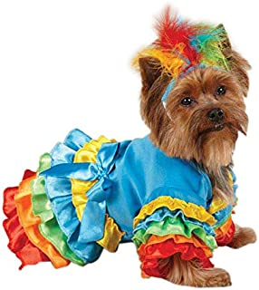 Casual Canine ZW4238 20 19 Polly Parrot Costume, Large, Blue