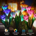 Solar Lights Outdoor Fairy Garden Lights Solar Powered Lamps 3 Pack with 7 Lily Flower Multi Color Changing LED, Outdoor Ornaments Patio Yard Lawn Garden Decoration Light