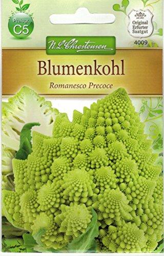 Blumenkohl \' Romanesco Precoce\' (Brassica oleracea) früh, dekorativ, schmackhaft