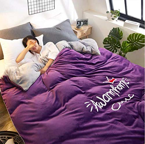 Winter thicken warm quilts comfortable soft quilt spring&autumn bedroom keep warm duvet with filling bedding comforter-purple_150X200CM/3.6KG