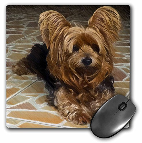 3dRose a Cute Yorkshire Terrier Dog with a Drawing Effect Mouse Pad (mp_201113_1)