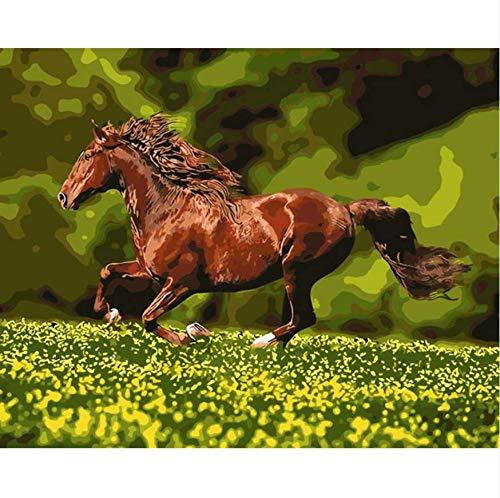 MMMDAN123 Wirbelwind Pferde Im Galopp Für Wohnzimmer Büro Dekor Malerei Ölgemälde Bilder Von Zahlen Zeichnen Von Zahlen DIY Poster Rahmenlos 40x50cm/16x20in