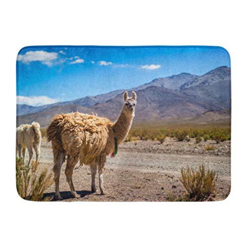 """NCH UWDF Felpudos Alfombras de baño Alfombrilla Azul Perú Llama en los Andes Marrón América peruana Bolivia Desierto 15.8""""x23.6"""""""