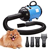Best Dog Dryers - Dog Dryer 2800W/3.8HP, Stepless Adjustable Speed Dog Hair Review