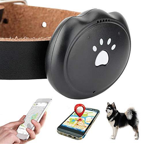 Jason Zeng GPS Pet Tracker & Activity Monitor Intelligent 5-Level Positioning System