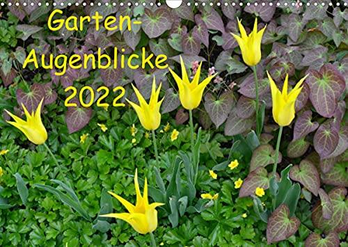 Garten-Augenblicke (Wandkalender 2022 DIN A3 quer)