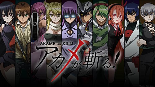 NewBrightBase Akame Ga Kill Anime Fabric Cloth Rolled Wall Poster Print - Size: (43' x 24' / 24' x 13')