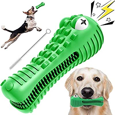 Woof Woof® - Indestructible Squeaky Dog Chew Toy with Toothbrush and Oral Cleaning Features. Made From Natural Milk Flavoured Rubber. Crocodile Design (Green)