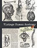 Vintage Human Anatomy Art Ephemera: Antique Medical Book Drawings of Organs, Bones & Muscles, One-Sided Decorative Paper for Junk Journaling, ... (45+ Vintage Images To Cut Out and Collage)