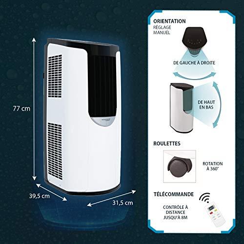 Iris Ohyama - Condizionatore portatile, 3 modalità di ventilazione, funzione sleep e autopulente, timer e telecomando 8 870 BTU/h - Portable Air Conditionner IHP-0901G-E - L31,5 x l39,5 x A77 cm