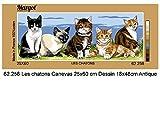 MARGOT/Kit tapisserie Tapisserie de Paris sur toile–Chatons (les chatons)