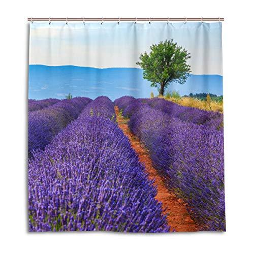 CPYang Duschvorhänge Blume Lavendelfeld Wasserdicht Schimmelresistent Bad Vorhang Badezimmer Home Decor 168 x 182 cm mit 12 Haken
