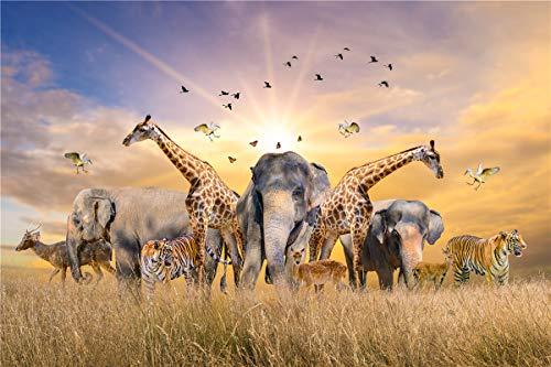 Jigsaw Puzzes 500 Pezzo per adulti Bambini Famiglie Carta Puzzle Africa Grassland
