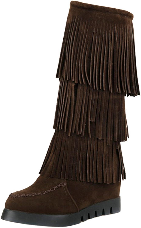 AicciAizzi Women Hidden Heel Fringes Boots Pull On