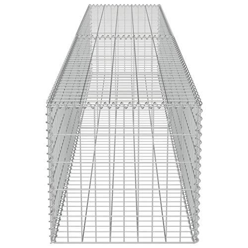 Estink Gabione Pflanzenkorb, Rostfreie Gabionenwand mit Abdeckungen aus verzinktem Stahl 300x50x50cm