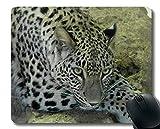 Yanteng Rectangle Mouse Pads para Ordenadores portátiles, Leopardo Animal Grande carnívoro Mousepad Antideslizante de Goma