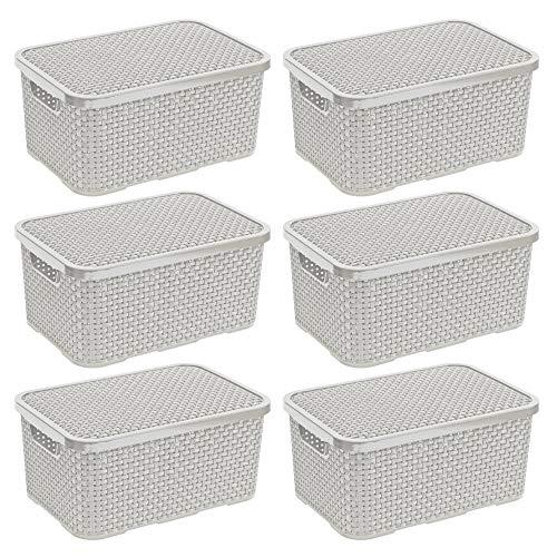 BranQ - Home essential - Set di 6 cestini in Rattan, in plastica PP, 28,8 x 19,7 x 16,2 cm, Colore: Crema