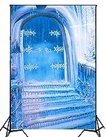 撮影の背景 氷雪 フローズン アイスドア 背景シート プロ 自宅 撮影用大型全身撮影用 プロ スタジオ背景 バックスクリーン 撮影用 バックペーパー 肖像画 背景幕 背景布 クリスマスの写真の背景 撮影道具 XT-4150,150x300cm