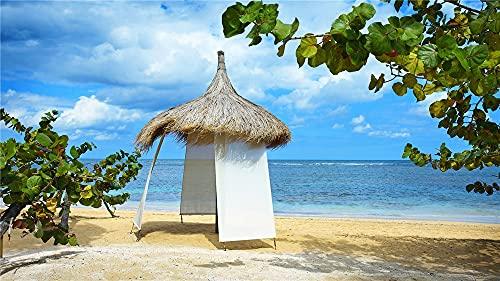 5D DIY diamante pintura playa - diamantes de imitación bordado punto de cruz lienzo pintura artes paisaje adultos niños regalos decoración de la pared del hogar