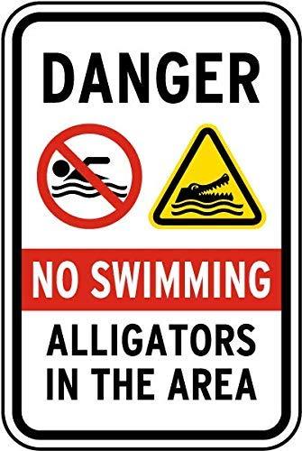 """Schild Aufschrift """" Swimming"""
