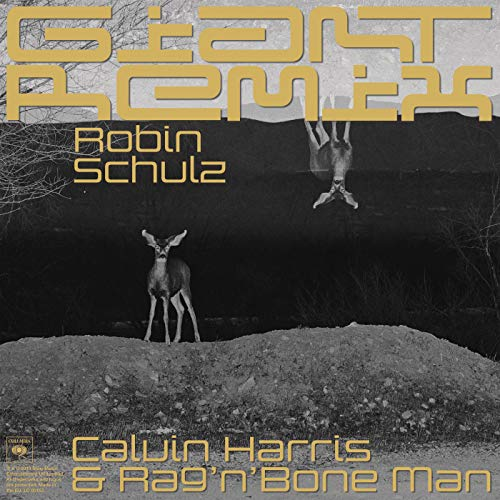 Giant (Robin Schulz Extended Remix)