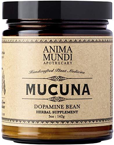 Anima Mundi Mucuna Powder - Pure, Powerful Mood Support (5oz / 142g)