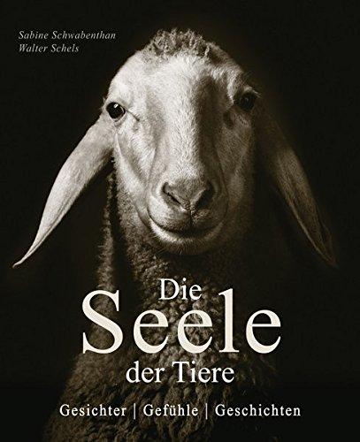 Die Seele der Tiere: Gesichter . Gefühle . Geschichten