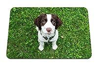 22cmx18cm マウスパッド (スパニエル子犬草座る表情) パターンカスタムの マウスパッド